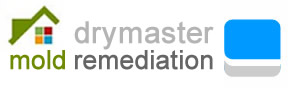 Drymaster Mold Remediation