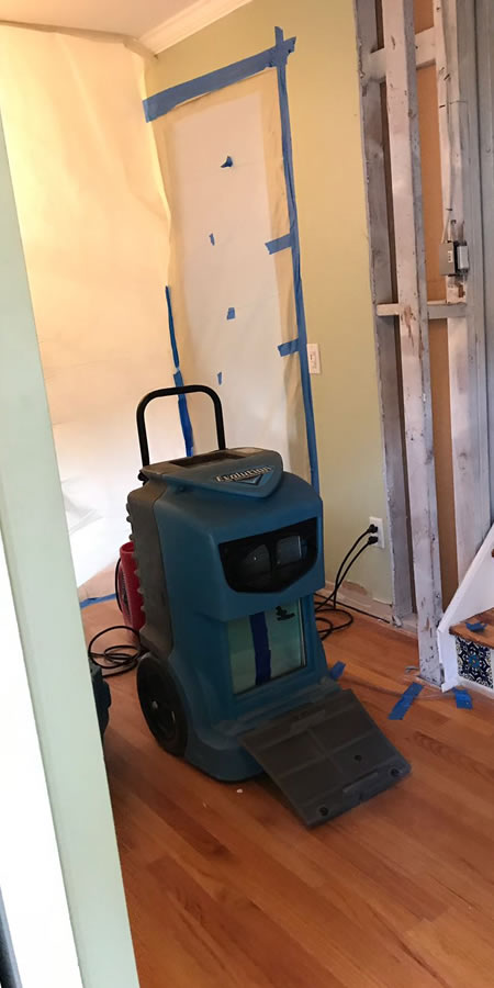 Mold cleanup in Hollywood