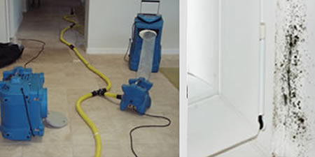 Water Damage restoration in Hollywood
